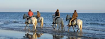 Equitation Plage